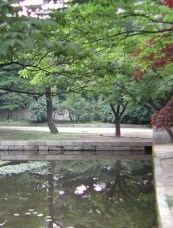 South Korea, Seoul, Changdeokgung Palace grounds