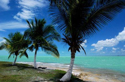 Beach in Belize